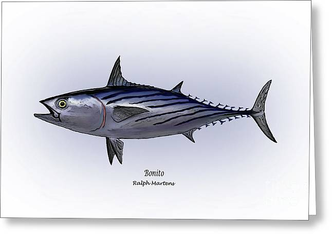 Bonito  Greeting Card by Ralph Martens