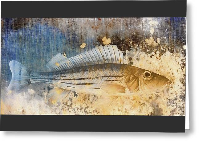 Book Of Fish Collage Greeting Card by Carol Leigh