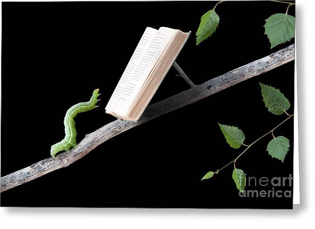Singleton Greeting Cards - Book Worm Greeting Card by Cindy Singleton