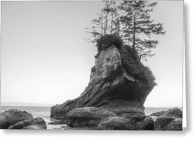 Boot Rock Greeting Card by Chad Tracy