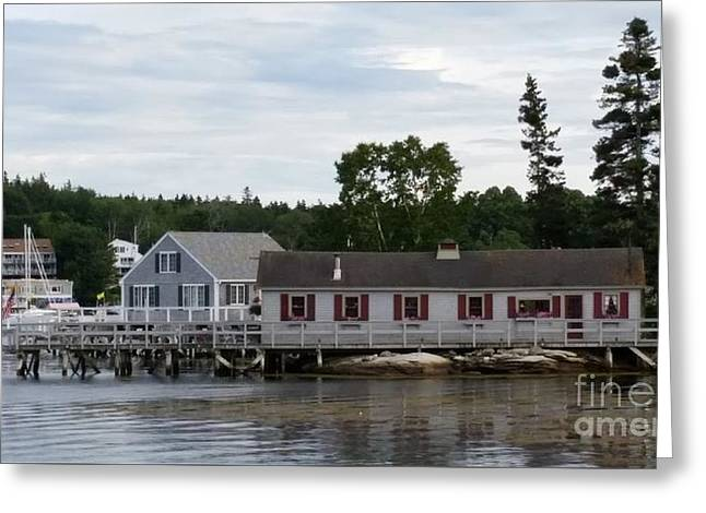 Outbuildings Greeting Cards - Boothbay Harbor Outbuildings Greeting Card by Jenn Greenleaf