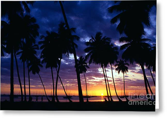 Puerto Rico Greeting Cards - Boqueron sunset Greeting Card by Thomas R Fletcher