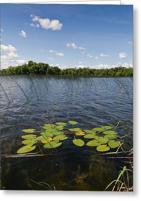Borden Lake Scene Greeting Card by Gary Eason