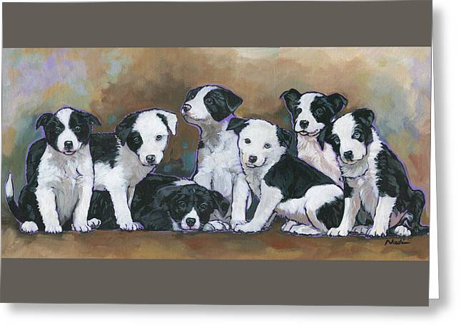 Nadi Spencer Greeting Cards - Border Collie Puppies Greeting Card by Nadi Spencer
