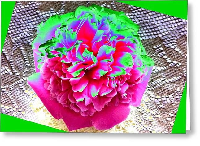 Bordered Peony Abstract Greeting Card by Will Borden