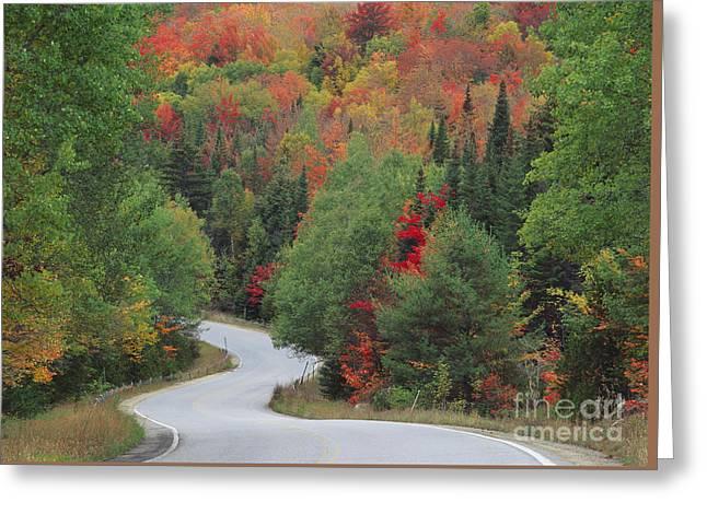 Boreas Greeting Cards - Boreas Road in the Adirondack Mountains Greeting Card by Michael P Gadomski