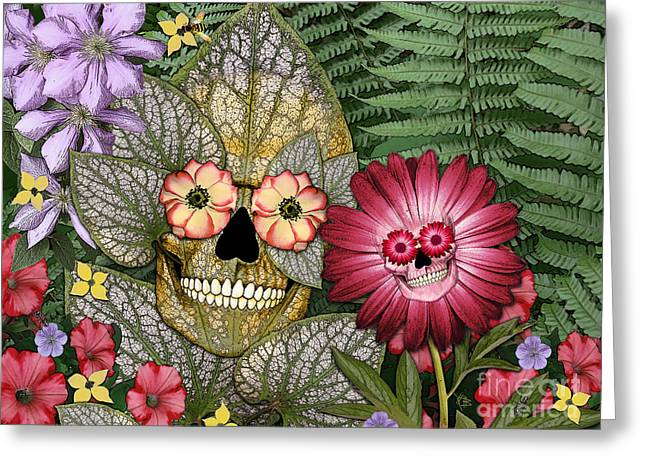 Born Again Greeting Card by Christopher Beikmann