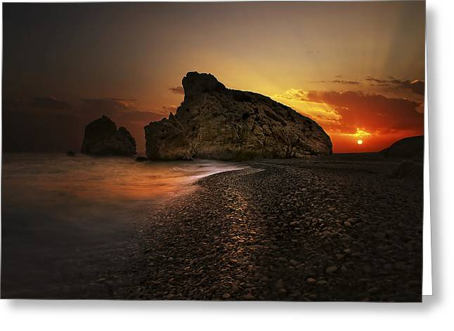 Sunset Greeting Cards - Born From The Foam Greeting Card by Tais