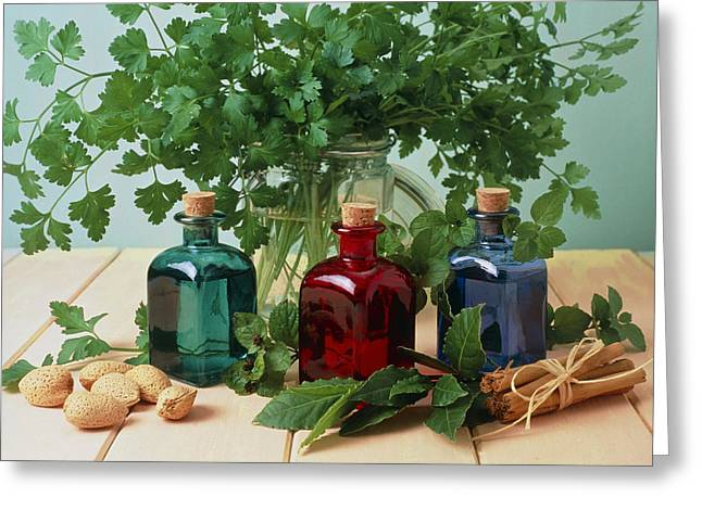 Treatment Greeting Cards - Bottled Aromatherapy Oils And Assorted Herbs Greeting Card by Erika Craddock