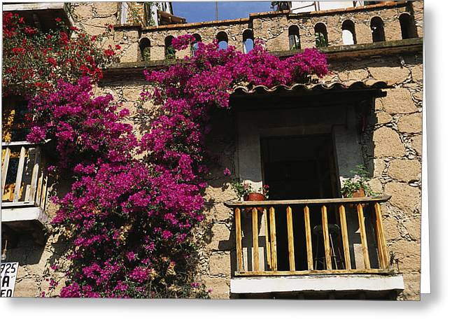 Doors And Doorways Greeting Cards - Bougainvillea Flowers On The Balcony Greeting Card by Gina Martin