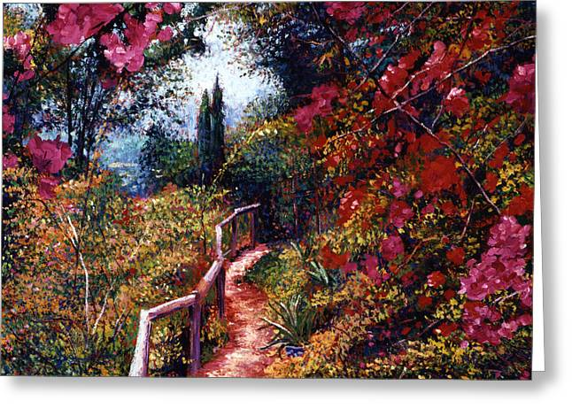 Europe Paintings Greeting Cards - Bougainvillea Path Tuscany Greeting Card by David Lloyd Glover