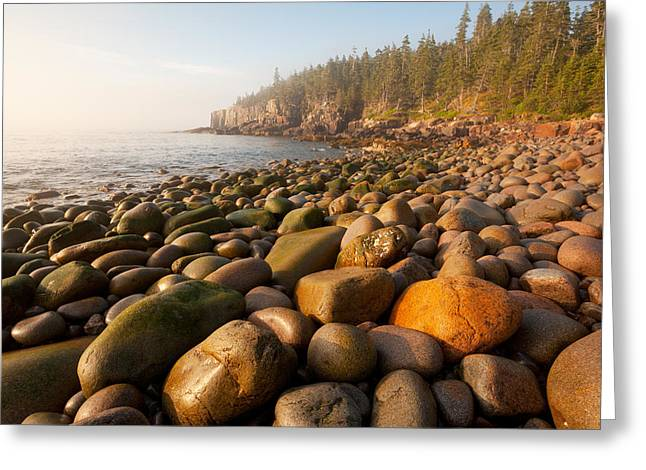 Ly Greeting Cards - Boulder Beach Acadia National Park Maine Greeting Card by Binh Ly