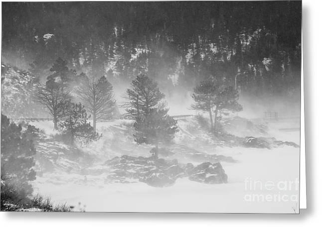 Boulder Canyon And Nederland Winter Landscape Greeting Card by James BO  Insogna