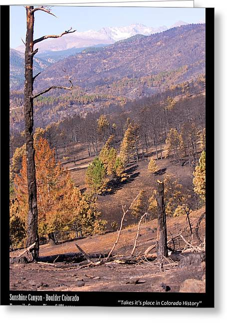 Colorado Wildfires Greeting Cards - Boulder County Wildfire 5 Miles West of Downtown Boulder Greeting Card by James BO  Insogna
