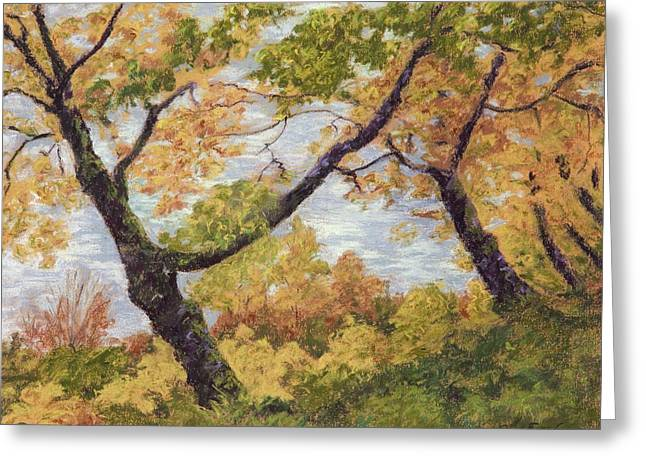 Fall Colors Pastels Greeting Cards - Boulevard Park Greeting Card by Susan Ernst Corser