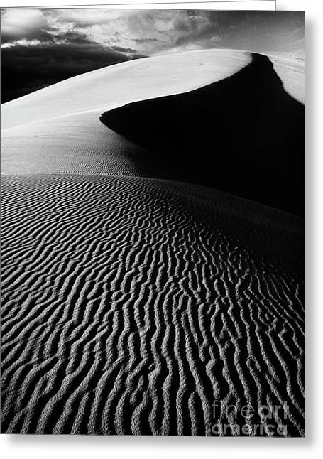 Coral Pink Sand Dunes Greeting Cards - Boundless Dune ll - black and white Greeting Card by Hideaki Sakurai