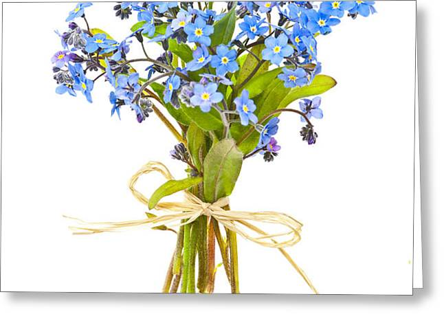 Bouquet of forget-me-nots Greeting Card by Elena Elisseeva