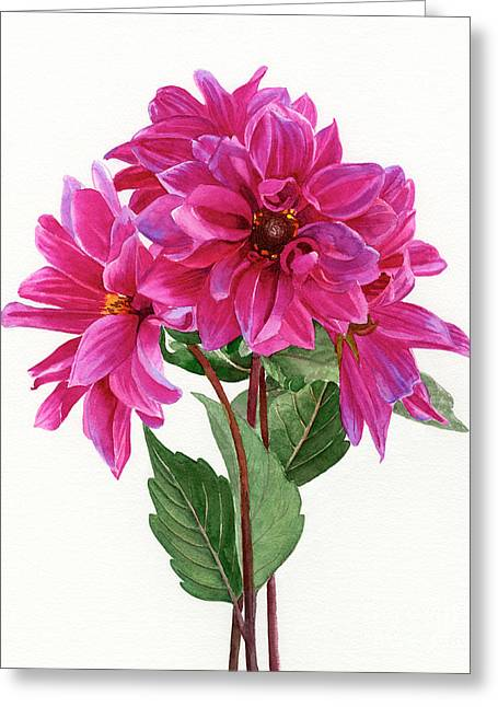 Bouquet Of Rose Violet Dahlias Greeting Card by Sharon Freeman