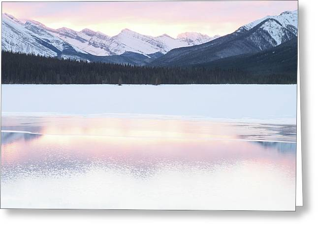 Bow Valley In Kananaskis Country Greeting Card by Carol Cottrell