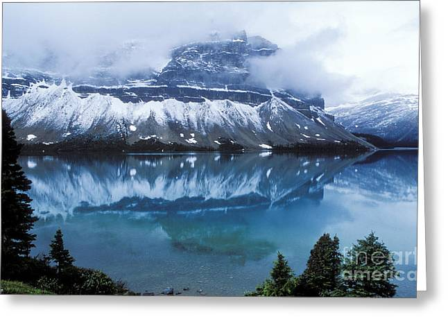 Snowstorm Greeting Cards - Bow Valley Storm Greeting Card by Sandra Bronstein