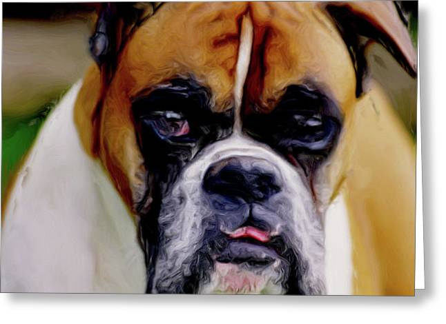 Boxer Expressions Greeting Card by Laurel Sherman