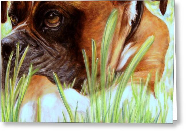 Boxer Pastels Greeting Cards - Boxer  Greeting Card by Patricia L Davidson