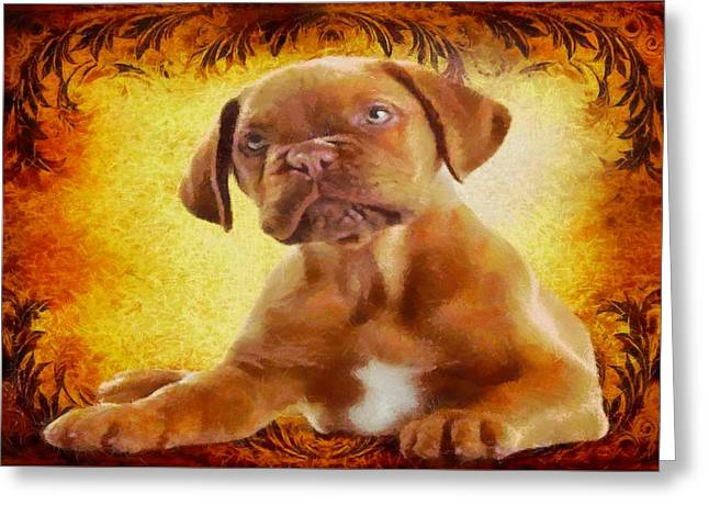 Puppies Digital Greeting Cards - Boxer Puppy Greeting Card by Charmaine Zoe