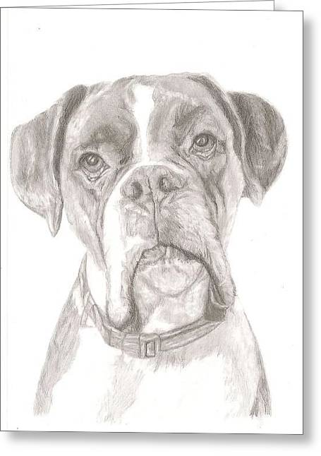 Boxer Greeting Card by Rebecca Vose