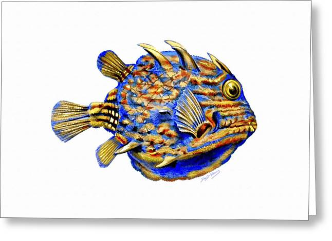 Reef Fish Greeting Cards - Boxfish II Greeting Card by David Wagner