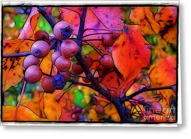 Bradford Pear in Autumn Greeting Card by Judi Bagwell