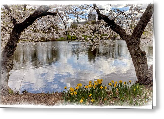 The Church Greeting Cards - Branch Brook Cherry Blossom Park Greeting Card by Geraldine Scull