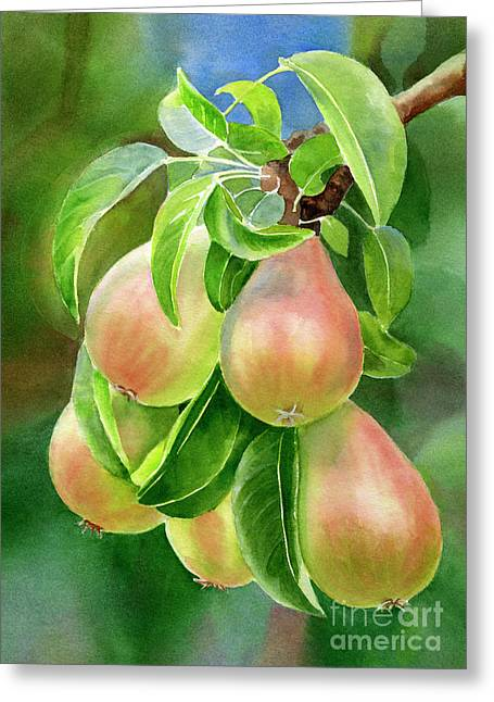 Branch Of Bronze Pears Greeting Card by Sharon Freeman