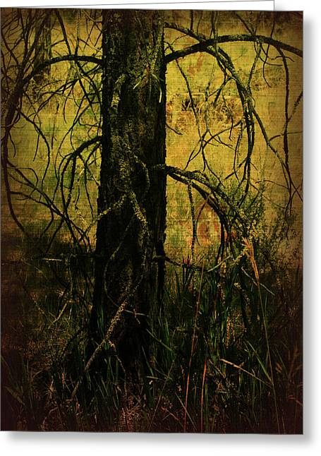 Bare Trees Mixed Media Greeting Cards - Branching Out Greeting Card by Bonnie Bruno