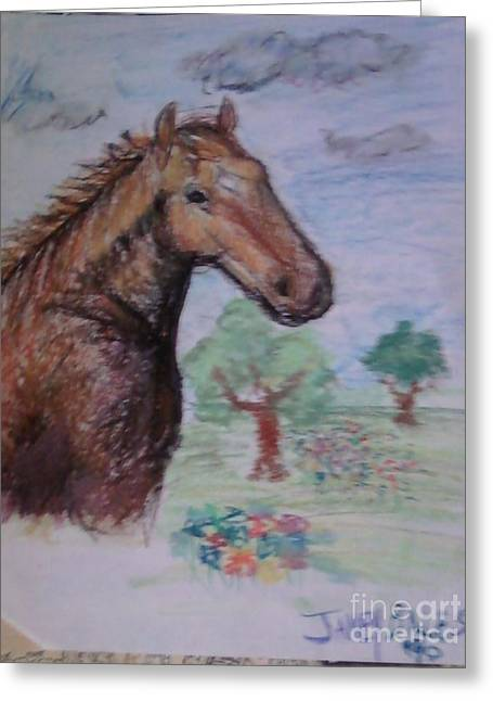Brandy The Horse Greeting Card by Jamey Balester