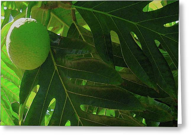 Breadfruit Greeting Card by James Temple
