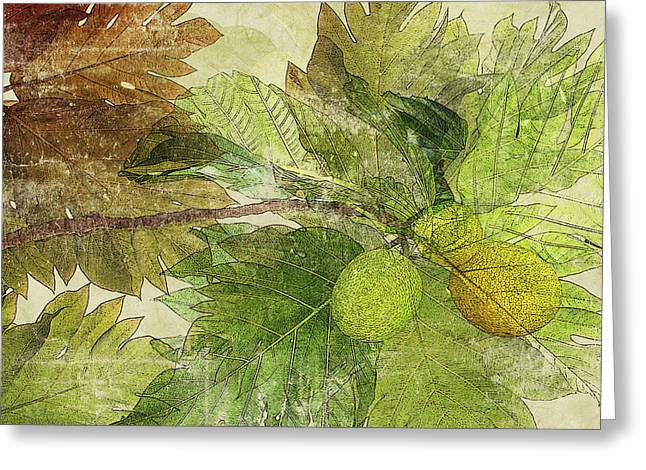 Mix Medium Mixed Media Greeting Cards - Breadfruit Greeting Card by Kaypee Soh - Printscapes