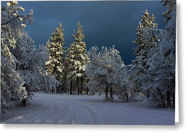 Snow-covered Landscape Greeting Cards - Break In The Storm Greeting Card by James Eddy