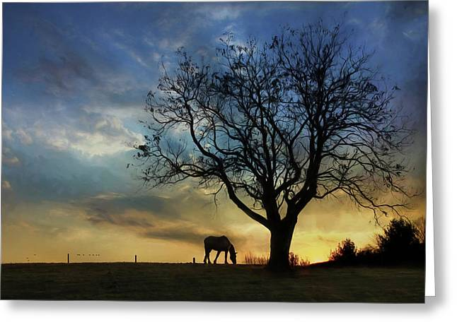 Grazing With A View Greeting Card by Lori Deiter