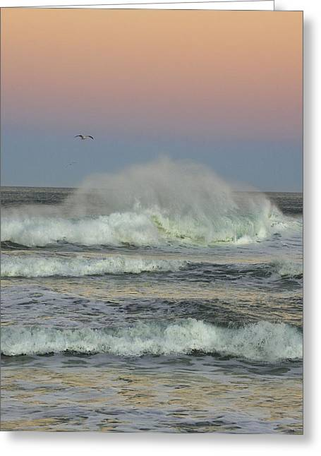 Big Sur Beach Greeting Cards - Breaking wave with Seagull Greeting Card by Robert Cook