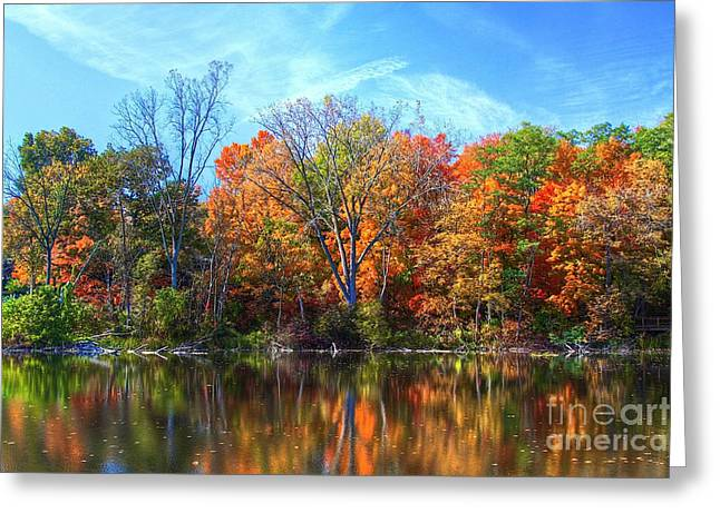 Best Sellers -  - Original Photographs Greeting Cards - Breathless Greeting Card by Robert Pearson