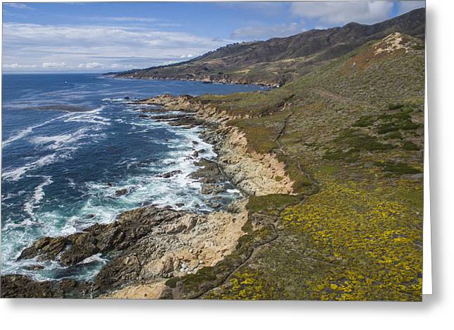 Big Sur Beach Greeting Cards - Breathtaking Big Sur Greeting Card by David Levy