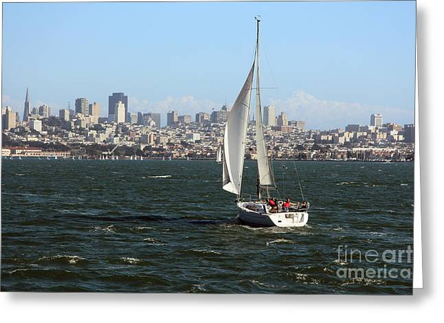San Francisco Bay Greeting Cards - Breezing Up in the Bay Greeting Card by Anthony Forster