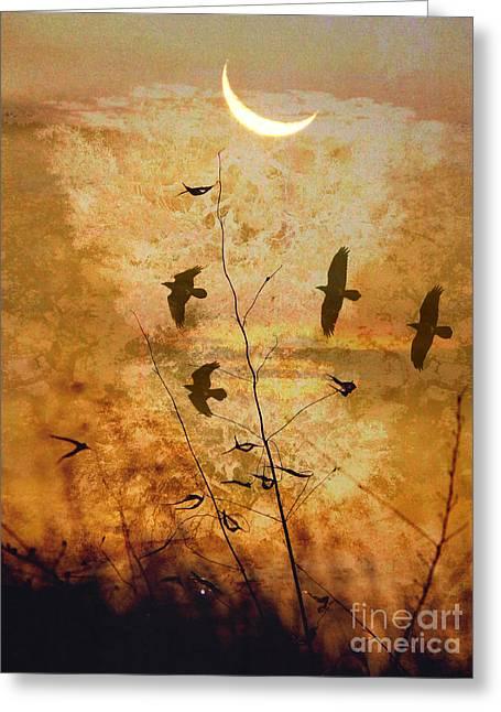 Breezy Evening Greeting Card by Robert Ball