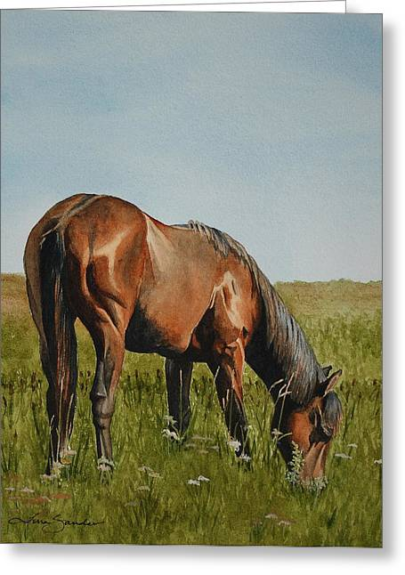 Grazing Greeting Cards - Breezy Greeting Card by Tina  Sander