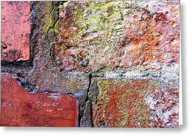 Brick Wall Greeting Card by Roberto Alamino