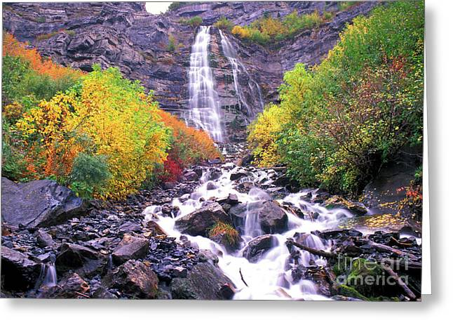 Hamptons Greeting Cards - Bridal Veil Falls Greeting Card by Dave Hampton Photography
