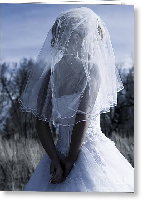 Woman Greeting Cards - Bride Greeting Card by Cindy Singleton