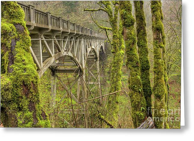 Moss Greeting Cards - Bridge at Latourell Falls Oregon Greeting Card by Dustin K Ryan