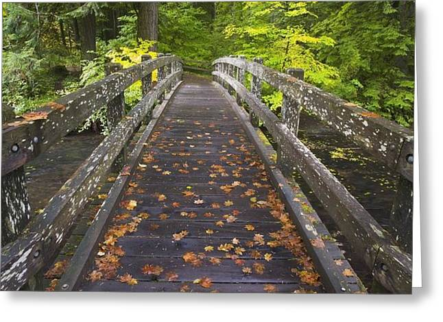 Bridge In A Park Greeting Card by Craig Tuttle