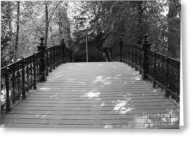 Recently Sold -  - Streetlight Greeting Cards - Bridge in Vondelpark in Amsterdam Greeting Card by Trude Janssen